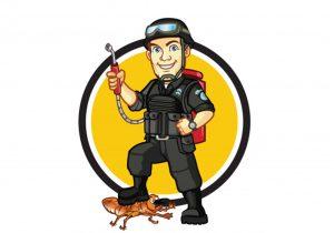 Best pest control service in kerala