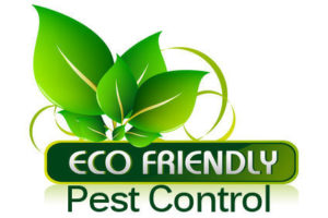 Eco-friendly Pest Control Services in Trivandrum