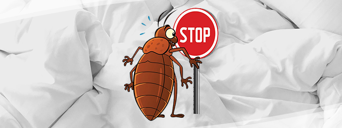 Bed bug removing service provider in Trivandrum